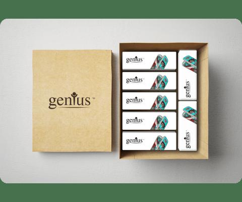 GeniusPipe